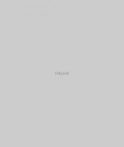 creative team 04 253x300